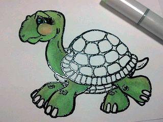 Turtle beginning